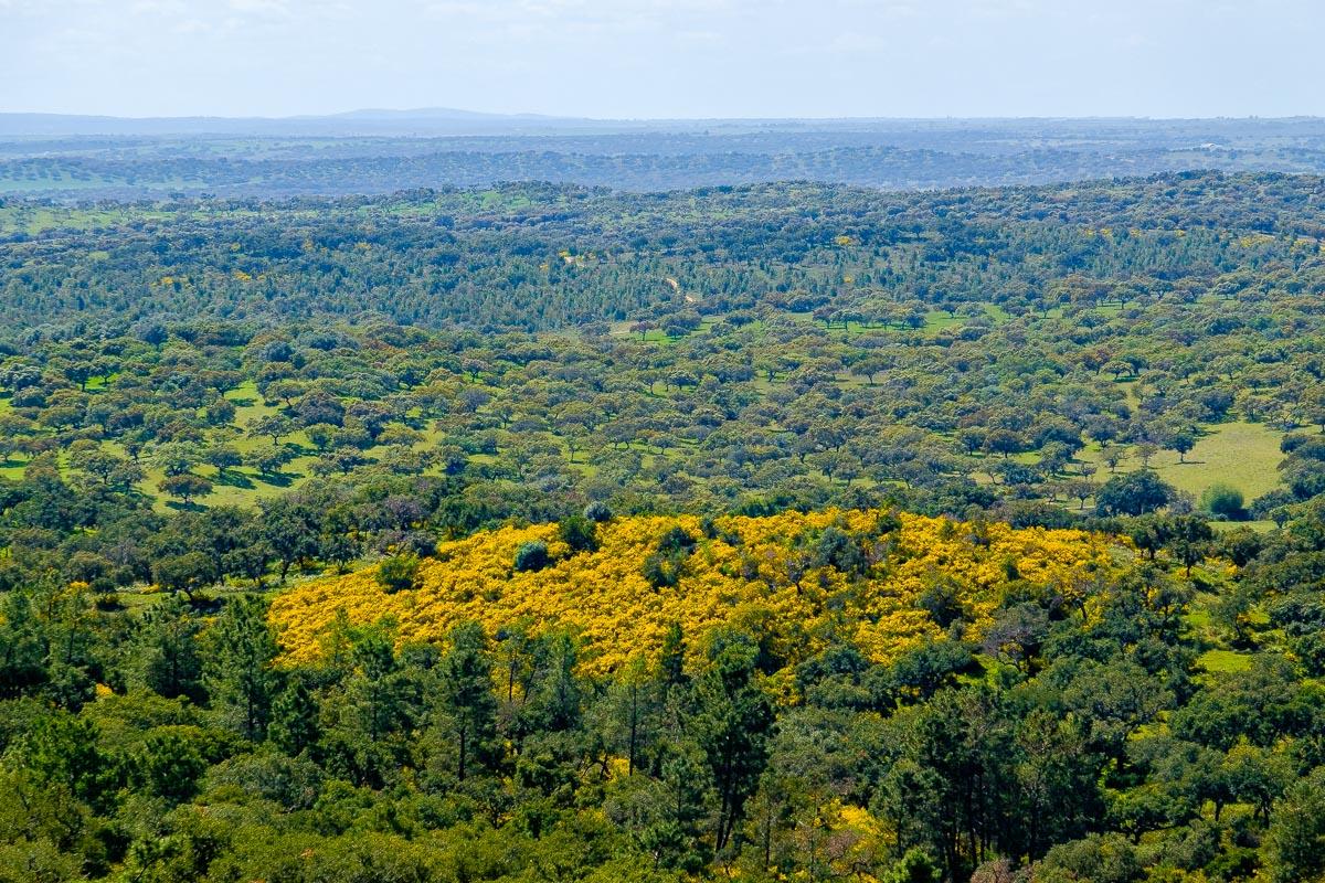 trekking view alentejo portugal