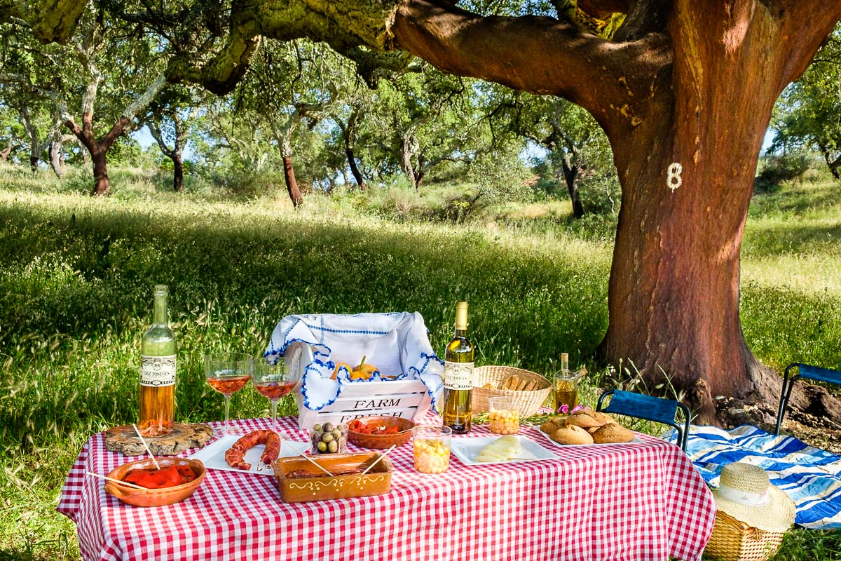picnic portugal countryside