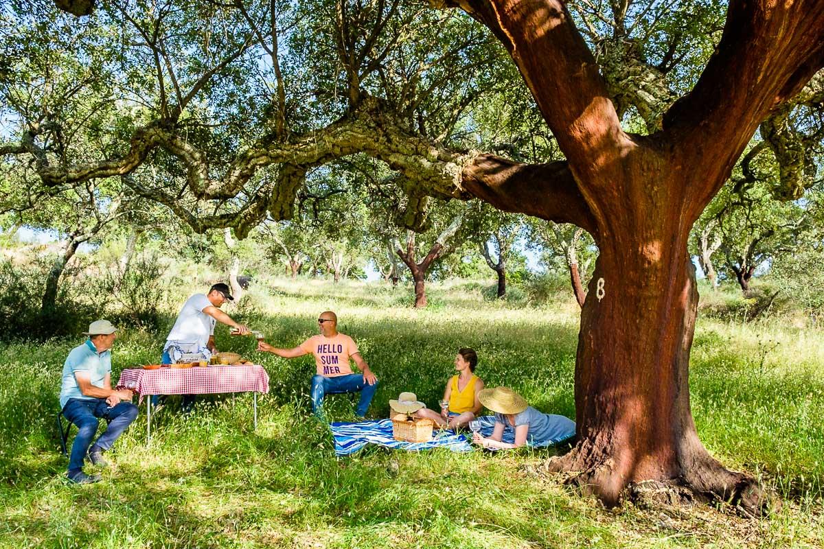 portugal picnic
